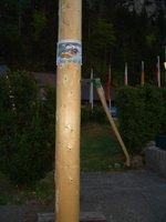 Maibaumaufstellen in Wildalpen 2007