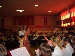 54. Bezirksmusikfest in Aigen im Ennstal